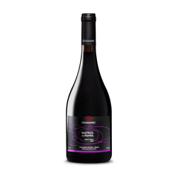 Guatambu Rastros do Pampa Pinot Noir 2016 (750ml)