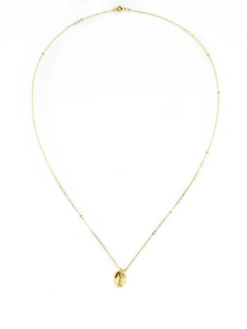 Gold Coquillage Necklace Long