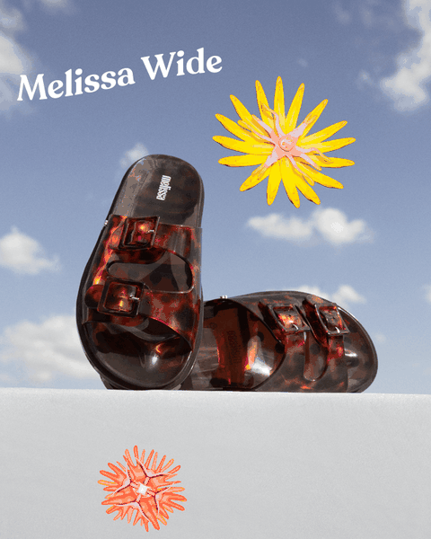 melissa wided