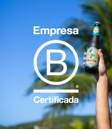 [socio-ambiental] Empresa B