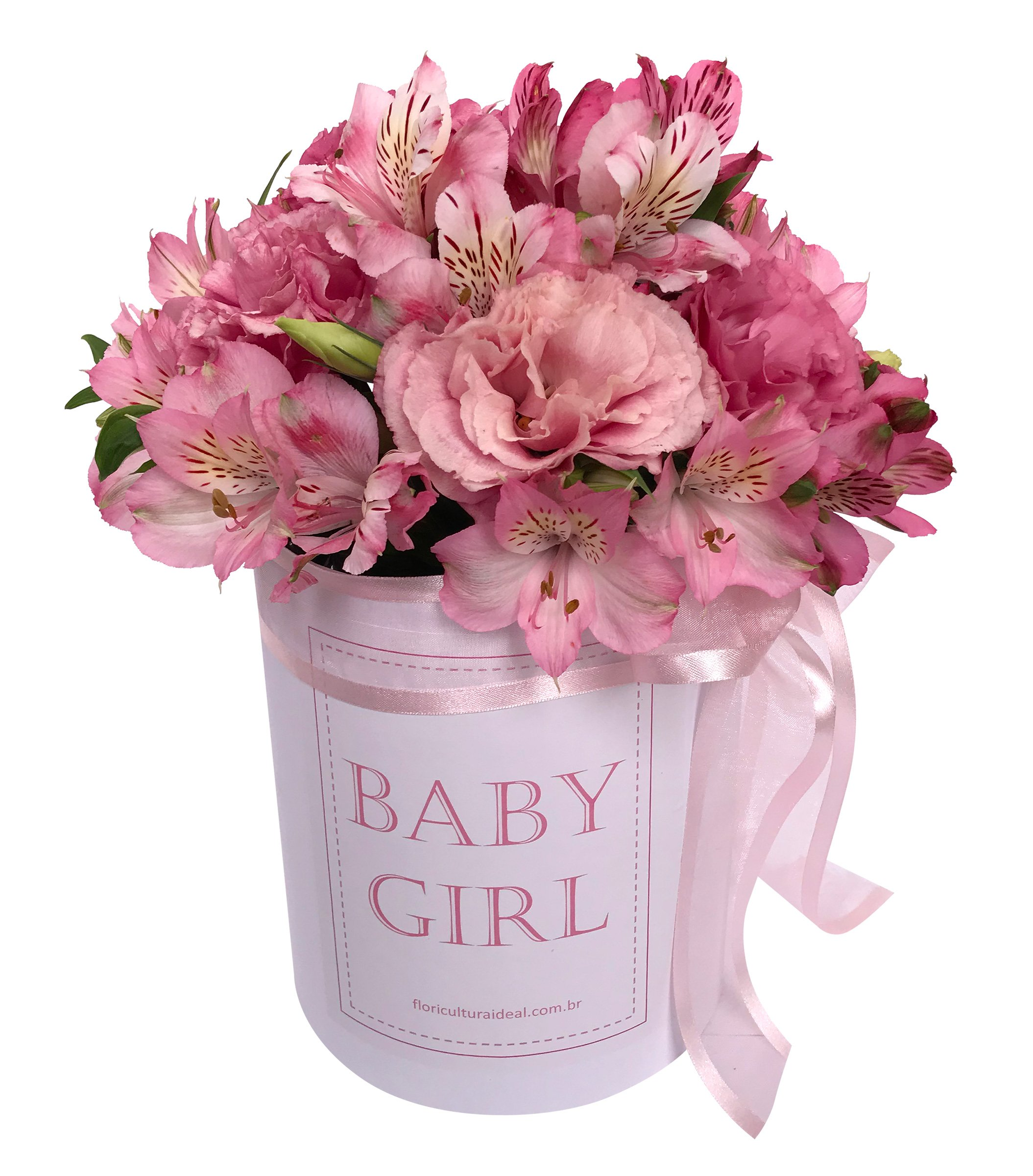 Foto do produto Box Baby Girl